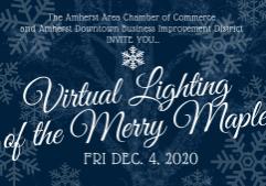 Lighting of the Merry Maple (2)